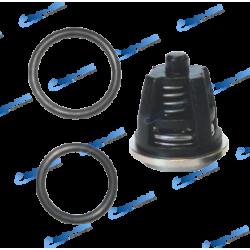 50250025 - KIT 6 CLAPETS AVEC JOINT ORING POMPE FW2 FWS2